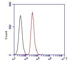 CASK Antibody in Flow Cytometry (Flow)