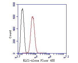 KLC1 Antibody in Flow Cytometry (Flow)
