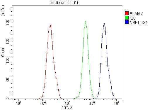NRF1 Antibody in Flow Cytometry (Flow)