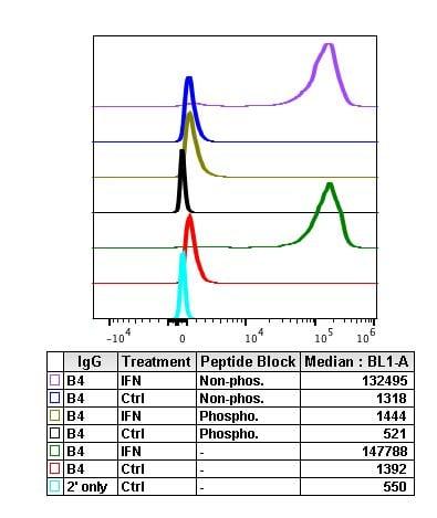 Phospho-Btk (Tyr223) Antibody in Flow Cytometry (Flow)