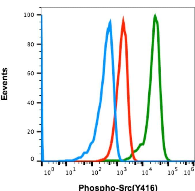 Phospho-Src (Tyr416) Antibody in Flow Cytometry (Flow)