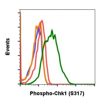 Phospho-Chk1 (Ser317) Antibody in Flow Cytometry (Flow)