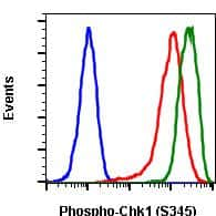Phospho-Chk1 (Ser345) Antibody in Flow Cytometry (Flow)