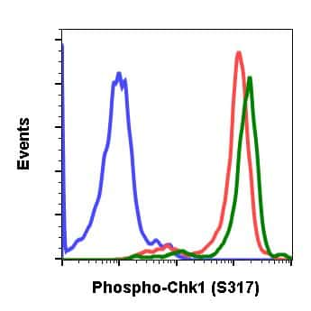 Phospho-Chk1 (Ser317) Antibody in Flow Cytometry (Flow)