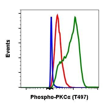 Phospho-PKC alpha (Thr497) Antibody in Flow Cytometry (Flow)