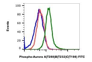 Phospho-Aurora A/B/C (Thr288, Thr232, Thr198) Antibody in Flow Cytometry (Flow)