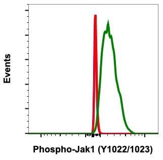 Phospho-Jak1 (Tyr1022, Tyr1023) Antibody in Flow Cytometry (Flow)