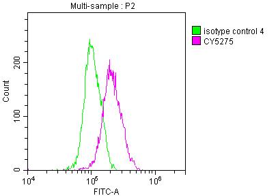 Nkx2.1 Antibody in Flow Cytometry (Flow)