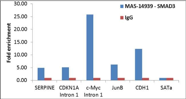 SMAD3 Antibody in ChIP assay (ChIP)