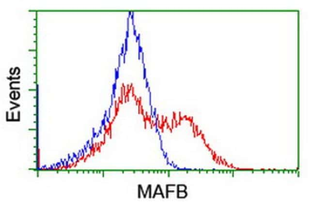 MAFB Antibody in Flow Cytometry (Flow)