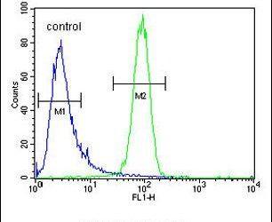 MCHR1 Antibody in Flow Cytometry (Flow)