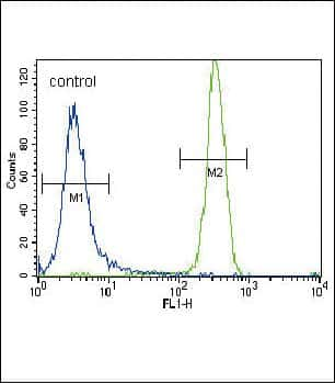 CSF1R Antibody in Flow Cytometry (Flow)