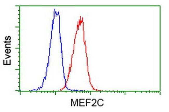 MEF2C Antibody in Flow Cytometry (Flow)