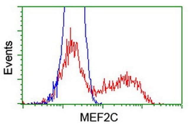 MEF2C Antibody in Flow Cytometry (Flow)