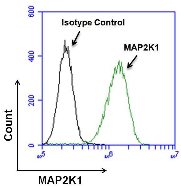 MEK1 Antibody in Flow Cytometry (Flow)