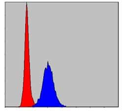 MMP9 Antibody in Flow Cytometry (Flow)