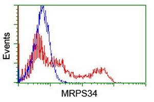 MRPS34 Antibody in Flow Cytometry (Flow)