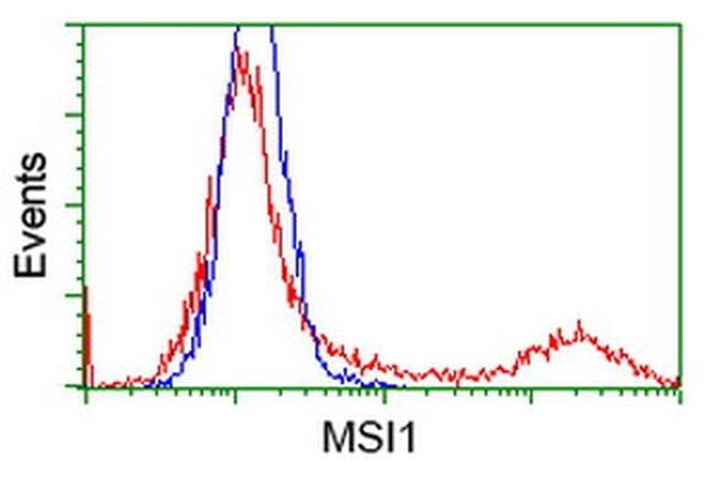 MSI1 Antibody in Flow Cytometry (Flow)