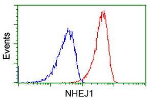 NHEJ1 Antibody in Flow Cytometry (Flow)