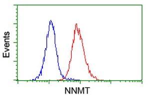 NNMT Antibody in Flow Cytometry (Flow)