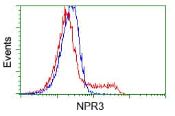 NPR3 Antibody in Flow Cytometry (Flow)