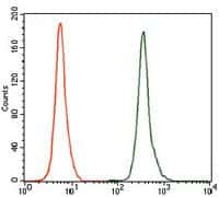 GCNF Antibody in Flow Cytometry (Flow)