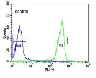 OMD Antibody in Flow Cytometry (Flow)