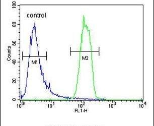 OR2M3 Antibody in Flow Cytometry (Flow)