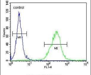 OR6C4 Antibody in Flow Cytometry (Flow)