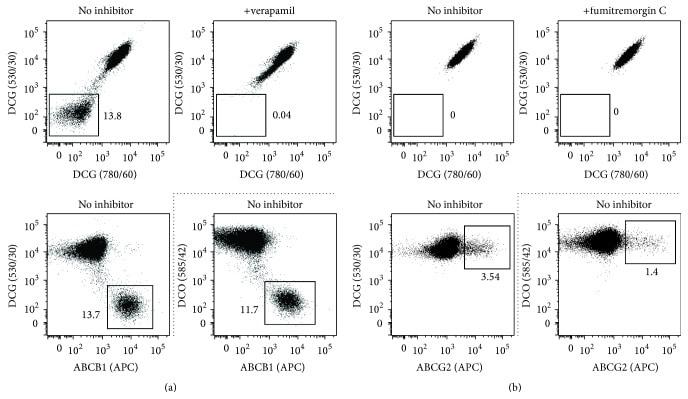 CD243 (ABCB1) Antibody in Flow Cytometry (Flow)