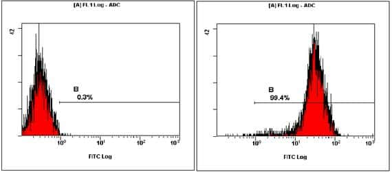 OCT4 Antibody in Flow Cytometry (Flow)