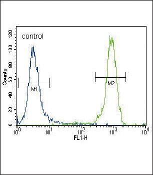 FGFR2 Antibody in Flow Cytometry (Flow)