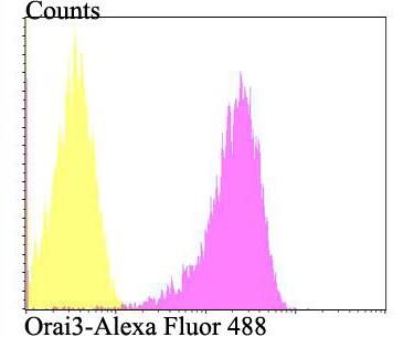 ORAI3 Antibody in Flow Cytometry (Flow)