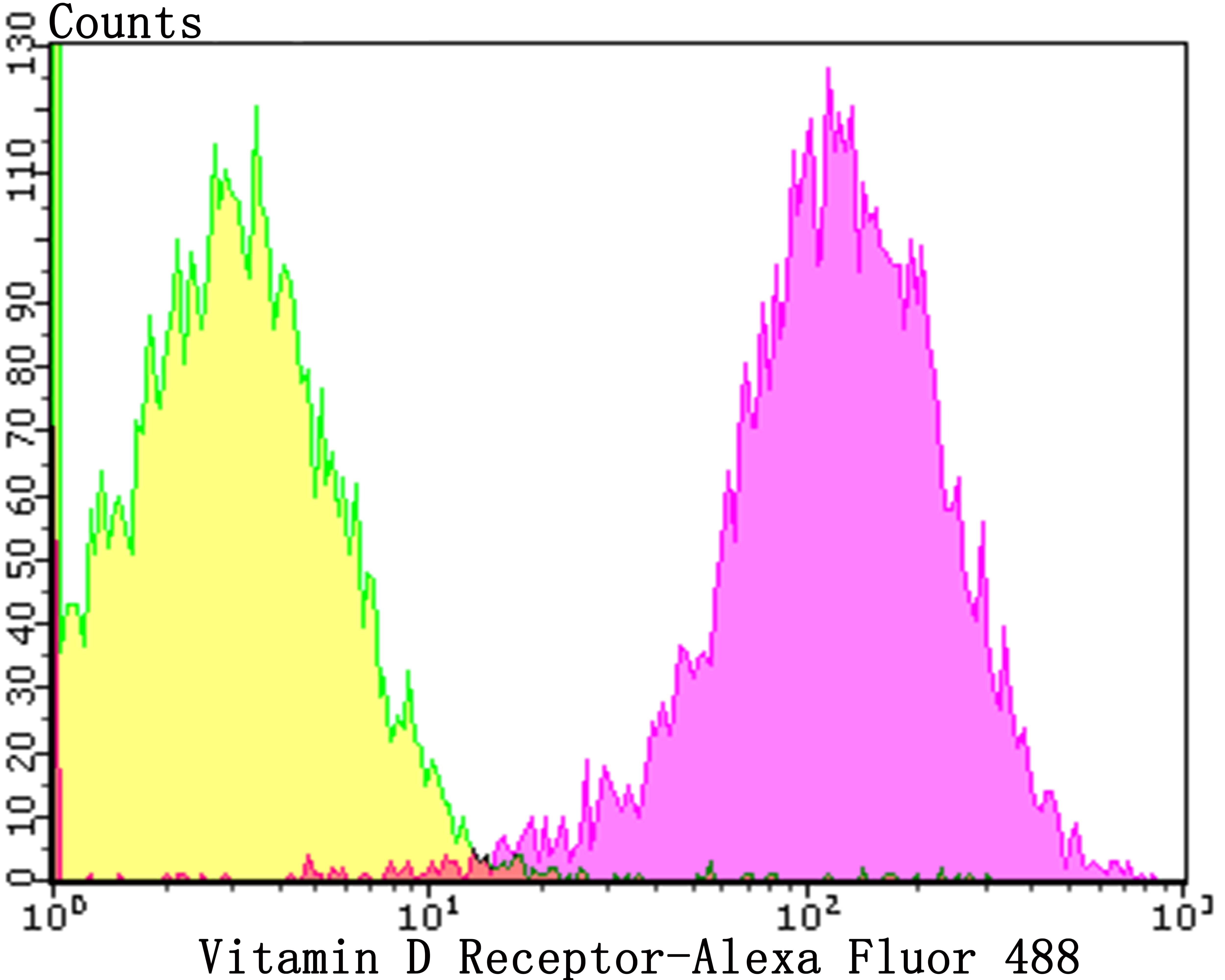 VDR Antibody in Flow Cytometry (Flow)