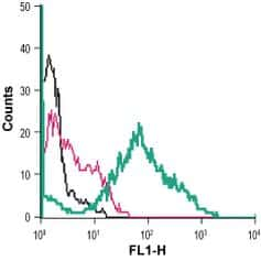 ANO6 (extracellular) Antibody in Flow Cytometry (Flow)
