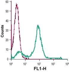 MCT1 (extracellular) Antibody in Flow Cytometry (Flow)