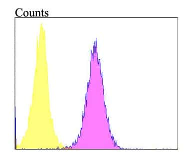 Follistatin Antibody in Flow Cytometry (Flow)