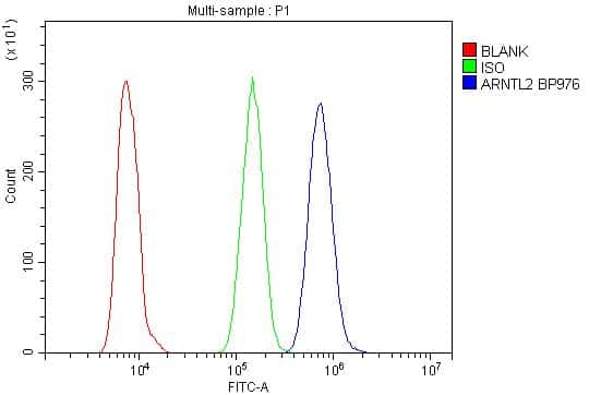 CLIF Antibody in Flow Cytometry (Flow)