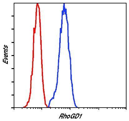RhoGDI Antibody in Flow Cytometry (Flow)