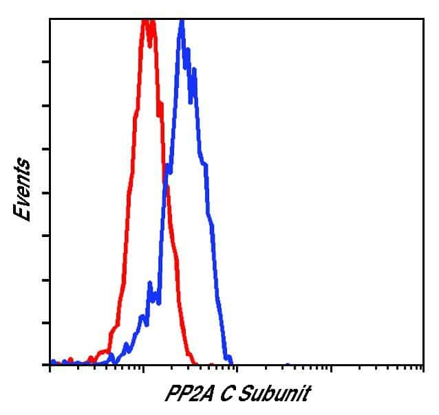 PP2A alpha Antibody in Flow Cytometry (Flow)