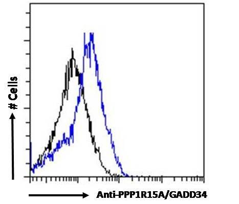 GADD34 Antibody in Flow Cytometry (Flow)