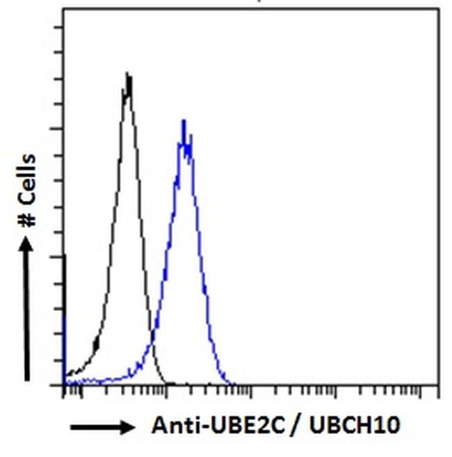 UBE2C Antibody in Flow Cytometry (FLOW)