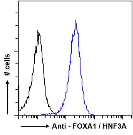FOXA1 Antibody in Flow Cytometry (Flow)