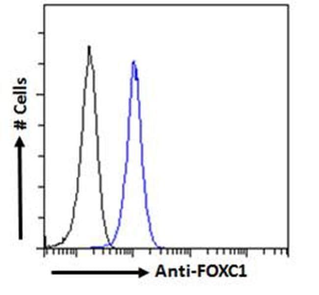 FOXC1 Antibody in Flow Cytometry (FLOW)