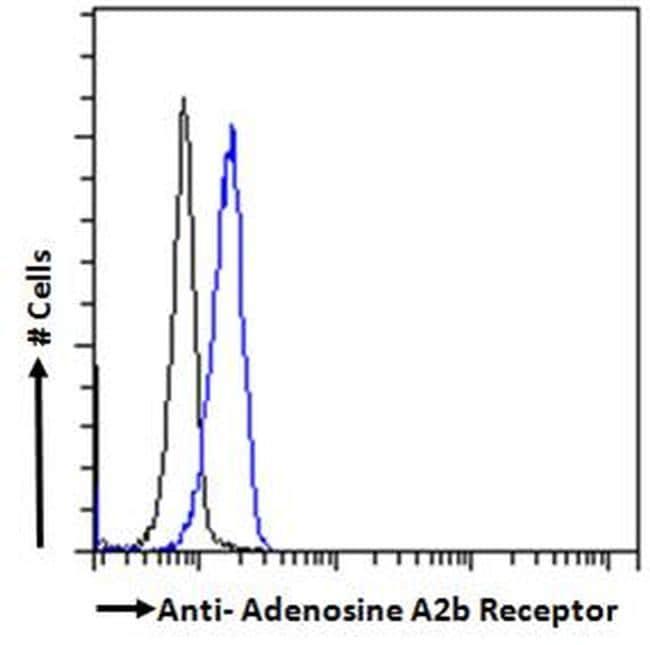 ADORA2B Antibody in Flow Cytometry (FLOW)