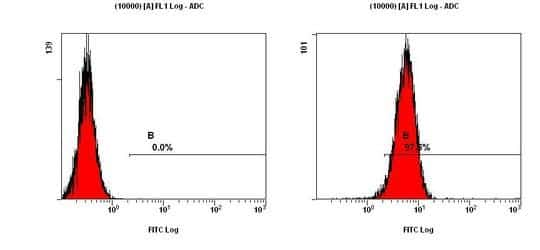 CCR2 Antibody in Flow Cytometry (Flow)