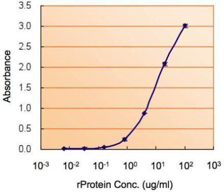 MIF Antibody in ELISA (ELISA)