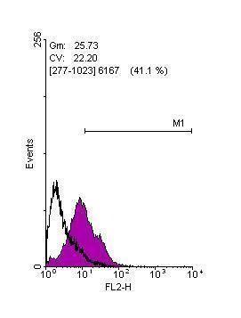 KLF4 Antibody in Flow Cytometry (Flow)