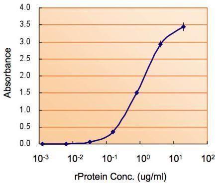 Monoamine Oxidase B Antibody in ELISA (ELISA)
