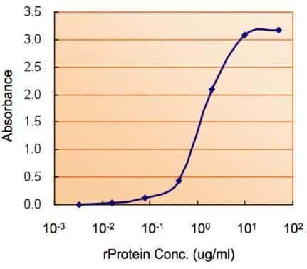AMPK alpha-2 Antibody in ELISA (ELISA)